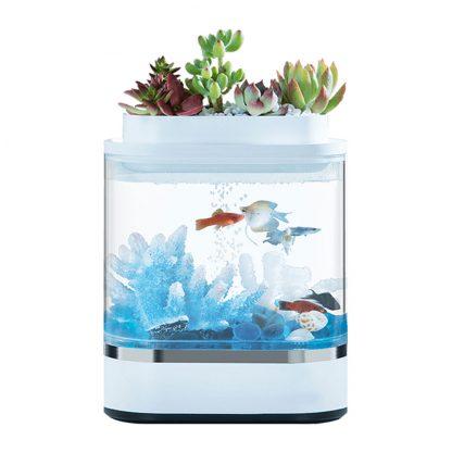 Akvarium Xiaomi Mini Lazy Fish Tank Hf Jhyg005 1